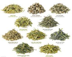 Manufacturer Supply Tea Extract Tea Extract Powder