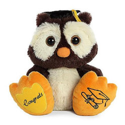 Winks Graduation Owl