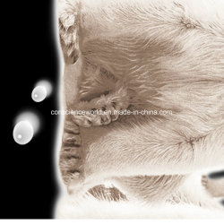 100%Polyester Polar Bear Pigment&Disperse Printed Fabric for Bedding Set