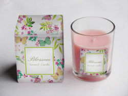 Scented Candle in Glass Jar (FCB1402)