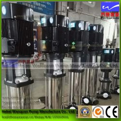 Circulation Pump and Deep-Well Submersible Pump (CDLF)
