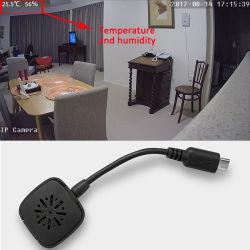 P2p CCTV Wireless Security IP Camera House Pan/Tilt