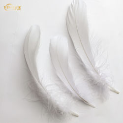 Wholesale White Duck Feather Down Suppliers