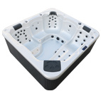Popular SPA with Hight-Grade Luxury Equipment- (L511)