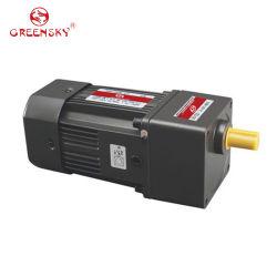 6W 25W 40W 90W 370W High Power Single Phase 3pH Geared Electric Motors AC Induction Gear Motor