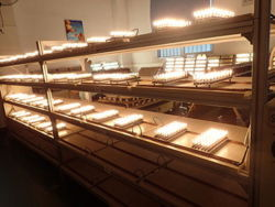 3.5W 240degree G9 Warm White Wall Store LED Cabinet Lamp