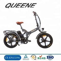 Queene/Factory Sale Directly Fat Tyre Wheel Ebike 500W 48V Tire Electric Bike 20inch