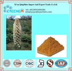 Natural Cistanche Tubulosa Extract, Cistanche Deserticola Ma Extract