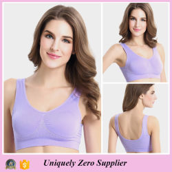519aa3a579f4a Colorful Double Layer Gym Seamless Genie Bra with Pad (FG5855)