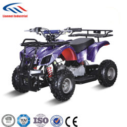 Factory Direct Sale Best Price 49cc Mini Quad ATV for Kids