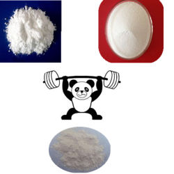 Mass Gainer Factory, Mass Gainer Factory Manufacturers