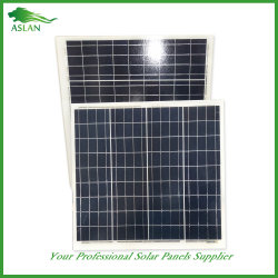 PV Solar Panel/Cell/Module Poly 40W Price From Factory