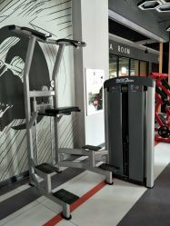 China Supplier Sport Gym Fitness Exercise Equipment Machine Assist DIP Chin