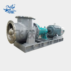 Spp (FLX) Slurry Centrifugal Chemical Electric Mixed Flow Pump