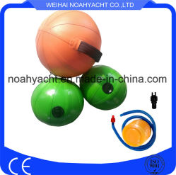 Hot-Sale Gym Fitness Equipment Sport Goods Adjust Weight Household PVC Colorful Water Balls for Sale