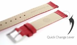 Quick Release 316L Spring Bar Watch Strap