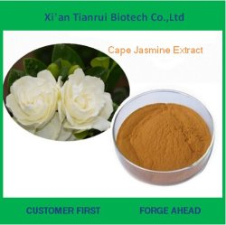 Manufaturer Supply Top Quality Cape Jasmine Fruit Extract