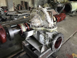 Horizontal Split Case Slurry Pump for Petrochemical Industry