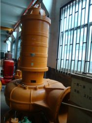 CE Approved Electrical Big Flow Cast Iron Submersible Sewage Pump (250WQ600-25-75)