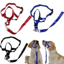 Dog Head Mouth Bite-Proof Stop Pulling Halter Training Rope Collar
