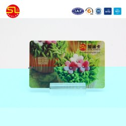 Competitive Price Blank Ntag213 RFID NFC Smart Card