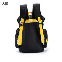 Wholesale Chinese Famous Brand Dakun Young Style Travel School Sport Backpack Bag