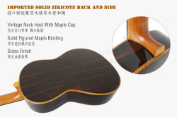 Aiersi a-Echoes Brand Double Top All Solid Classical Guitar (SC03DCZ)