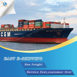 Sea Freight Container Professional Shipping From Guangzhou to Southeast Asia