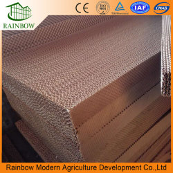 Greenhouse Poultry Farm Industrial Corrugated Cellulose Wer Curtain Honey Comb Evaporative Cooling Pad