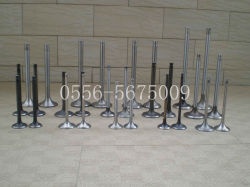 Wholesale High Quality Factory Price Engine Valves for Weichai 250