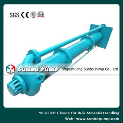 Made in China Big Vertical Sewage Slurry Pump, Centrifugal Pit Pump, Mining Equipment