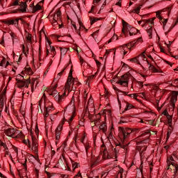 Hot Spicy Red Dry Chilli From China with Low Price