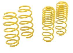 Customized Car Parts Sport Car SUV Suspension Compression Spring