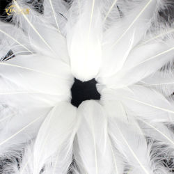 White Duck Feather and Down for Filling