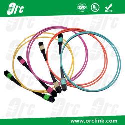 MPO Patchcord Jumper Optical Fiber/ Trunk Cable