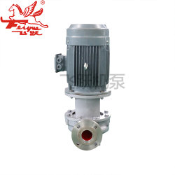 Sg Submersible Slurry Centrifugal in-Line Pump