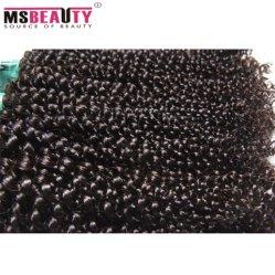 Unprocessed 100% Indian Hair Kinky Curly Real Human Virgin Hair
