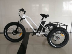 Electric Trike Eelctric 3 Wheel Bicycle