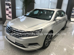 2017 Hot Sale Electric Car Pure Electric Vehicle