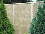 New Garden Reed Board, Fence and Screening for Garden (3inch thickness)