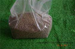 Clumping Natural Herbal Cat Litter