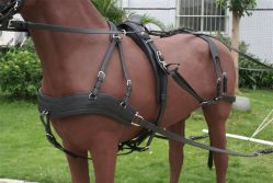 High Quality PVC Made Horse Harness for 1horse