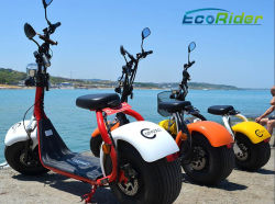 Wholesale Harley Cheap Electric Motorbike 60V Battery Pedal Scooter