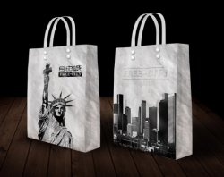 Wholesale Color Printing Rope Handle Manufacturer Paper Shopping Bag