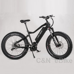 48V 750W Bafang Motor Energy Saving Electric Bike with Ce Certificate