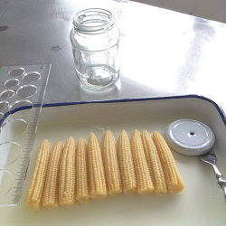 Canned Food Canned Marinated Baby Corn in Glass Jar