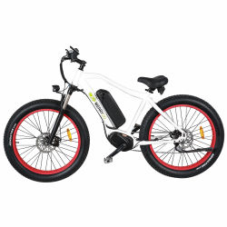 Fashionable Chinese 26 Inch Alloy Frame Electric Sport Bike MTB