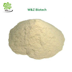 Bodybuilding Sports Nutrition Raw Wholesale Powders Creatine Monohydrate