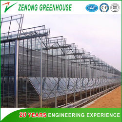 Venlo Glass Greenhouse with Mist-Irrigation System for Seed Breeding/Flowers