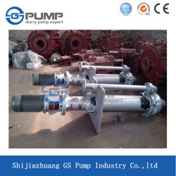 Heavy Duty Centrifugal Vertical Submersible Slurry Pump Made in China